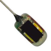 Core Marine Glue-On Series - Product Image